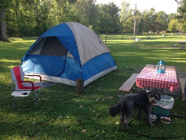 Campsite 192